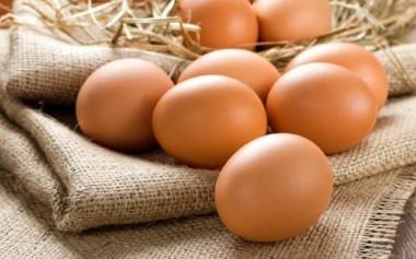 Konsumsi Telur dari Sumber yang Aman dan Berkelanjutan